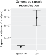 6_recombination2.png